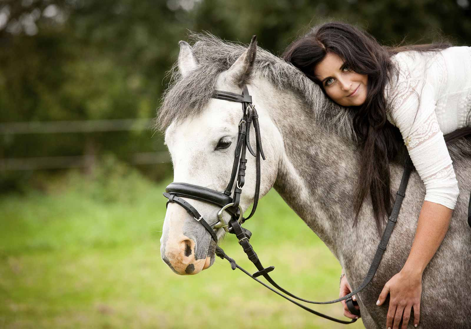 Equinenow Horses For Sale