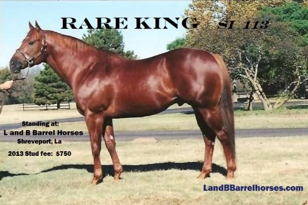 Sorrel Quarter Horse Stallion for Sale in Louisiana