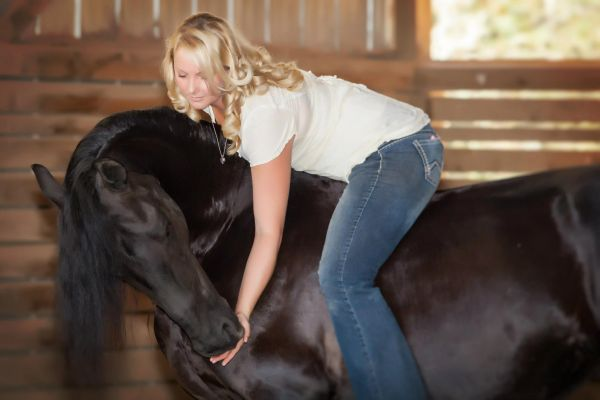 Black Friesian Stallion for Sale in Oregon