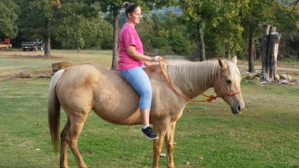 Palomino Quarter Horse for Sale in Oklahoma