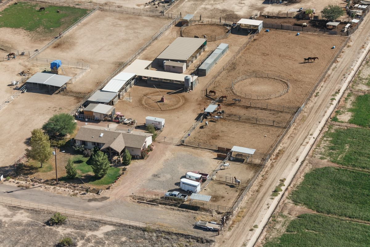 A and M Equestrian, Equine Sales & Quality Horse Boarding Litchfield Park, Arizona 85340