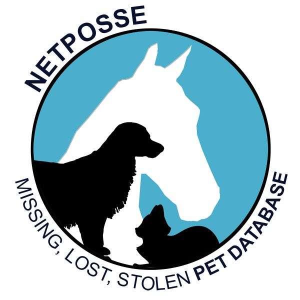 Stolen Horse International-NetPosse.com