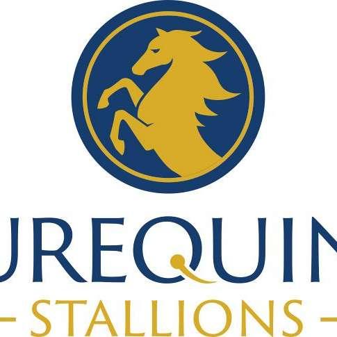 Eurequine LLC