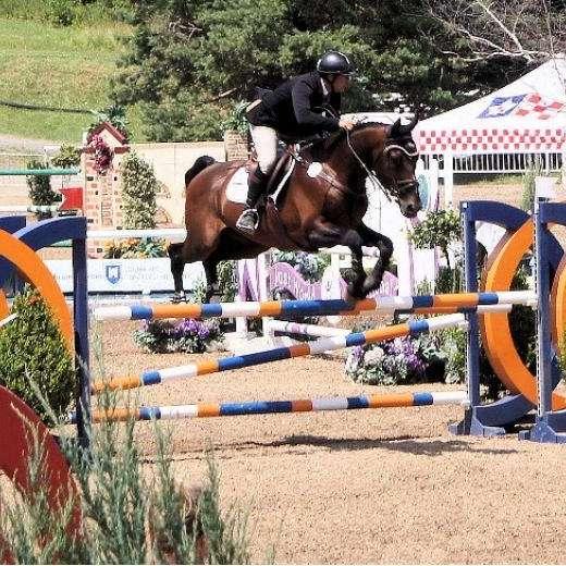 Grand Prix Breeders Equestrian Centre