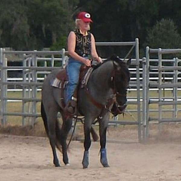 Knight Hawk Ranch