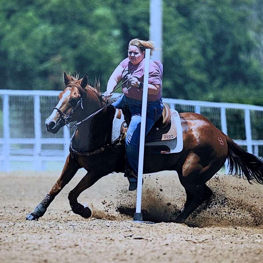 BR Barrel Horses