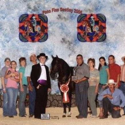 Horse Haven  Gascon Horsemanship