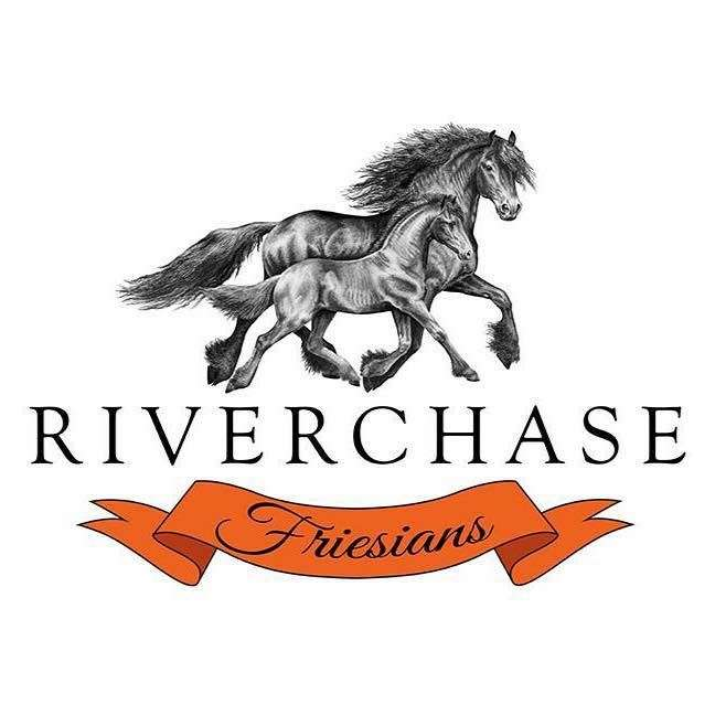 Riverchase Friesians
