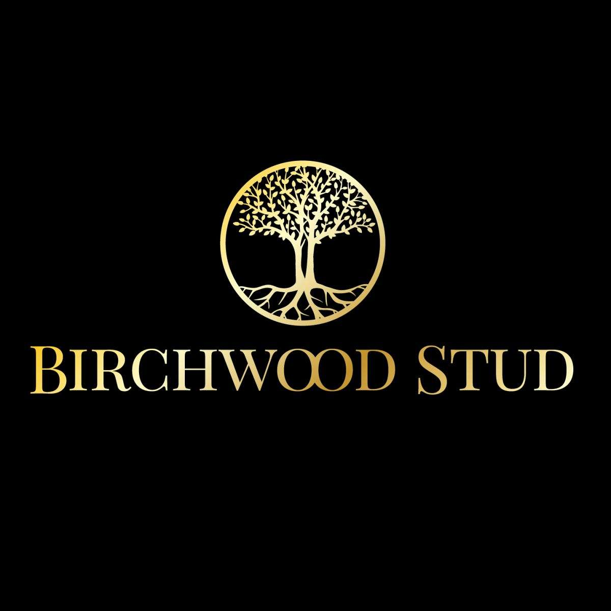 Superlative Performance Horses LLC