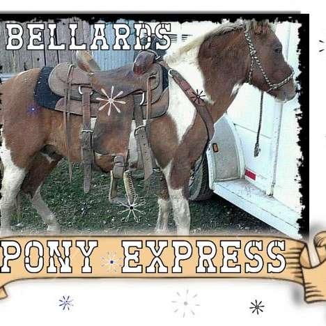 Bellards Pony Express