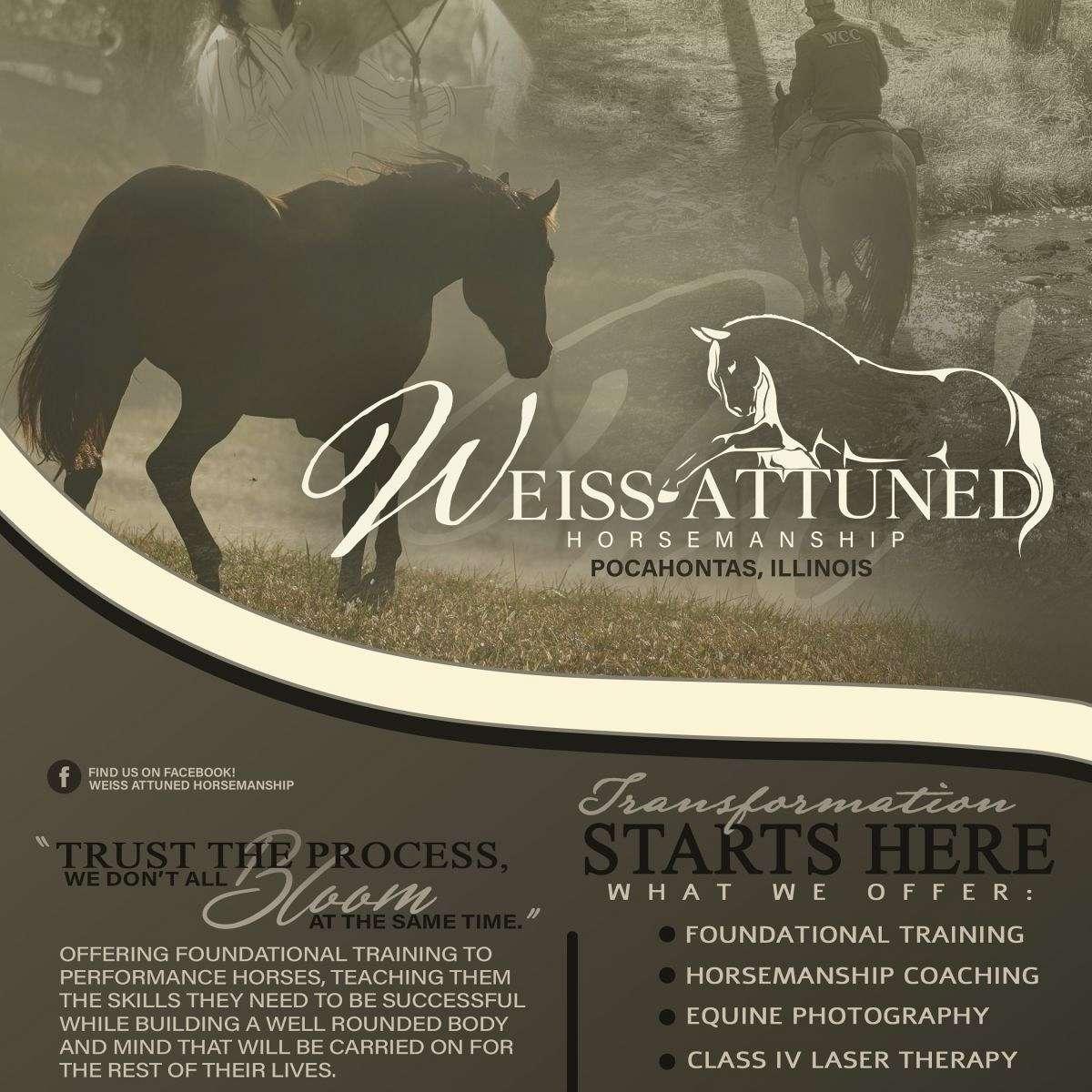 Weiss Performance Horses n Ponies
