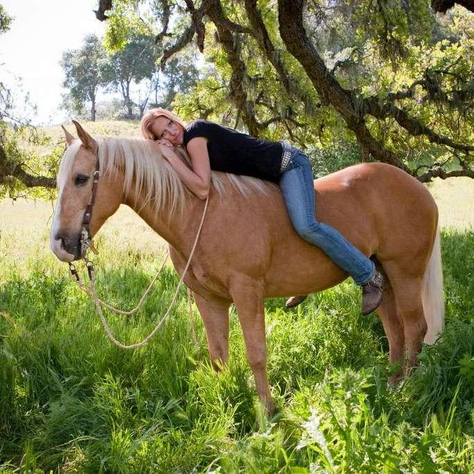 Nojoqui Horse Ranch Boarding  Training Facility