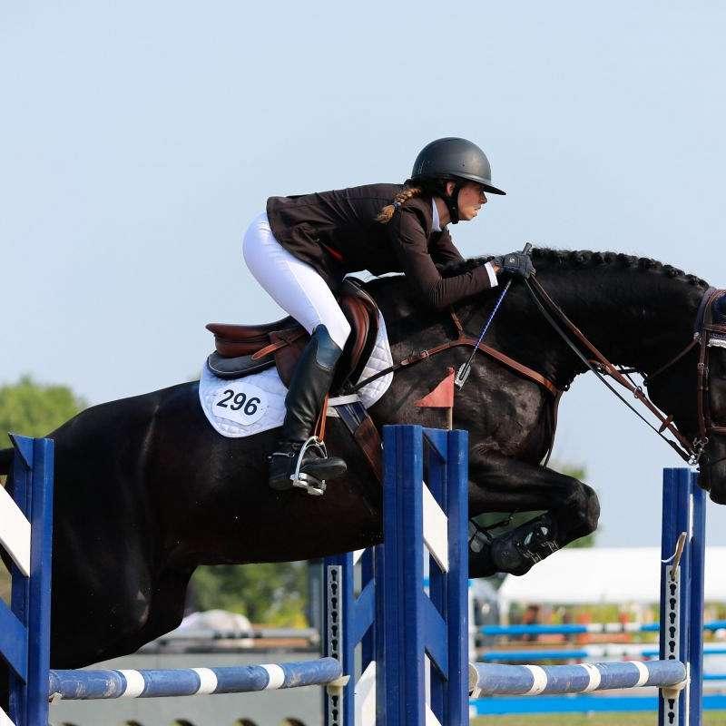 Meraki Equestrian