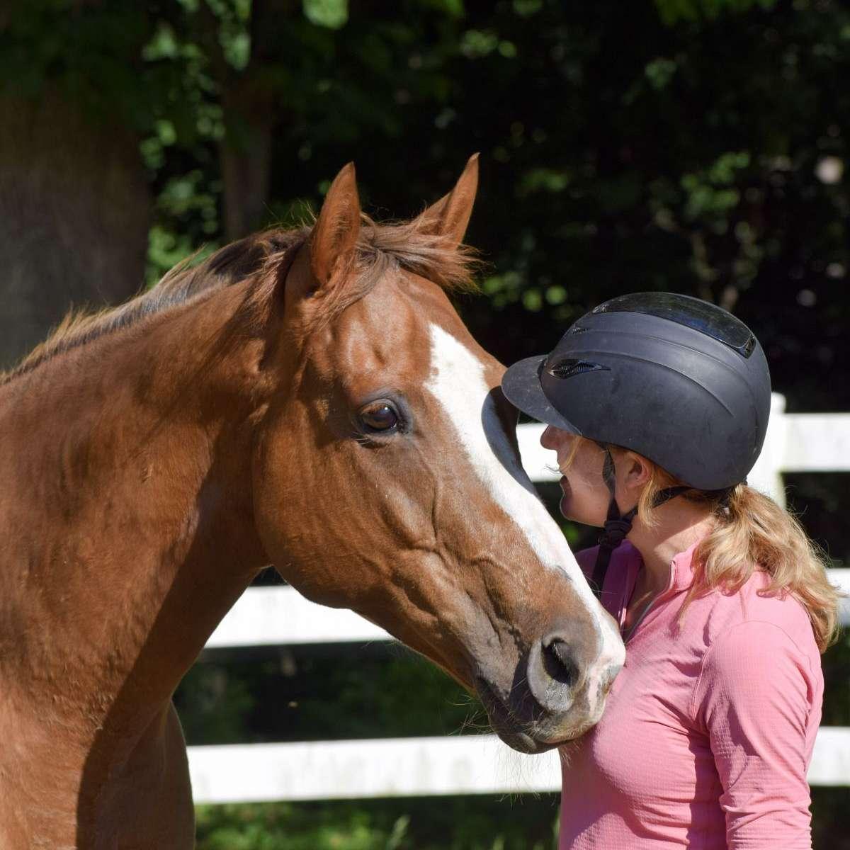 Empirical Equestrian