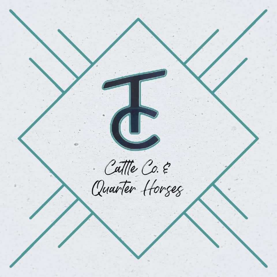 TC Cattle Co.  Quarter Horses