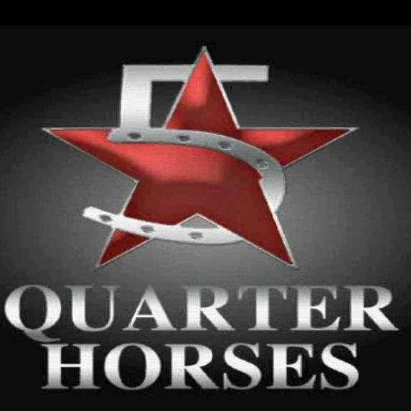 5 Star Quarter Horses