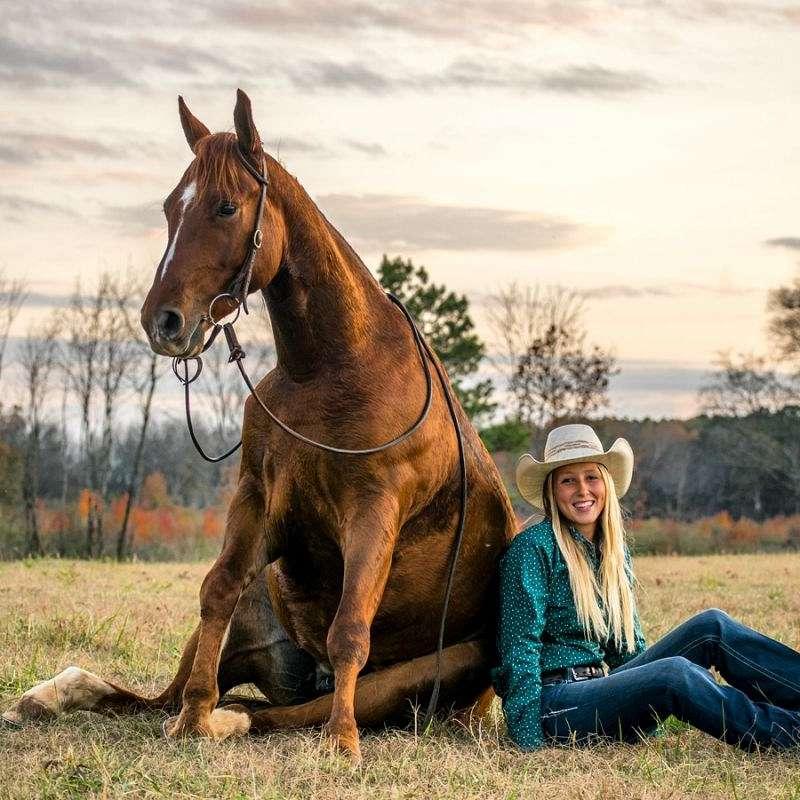 Double C Horsemanship  Training