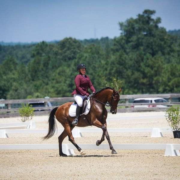Jumpp Equestrian LLC
