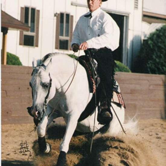 Keith Tracy Performance Horses