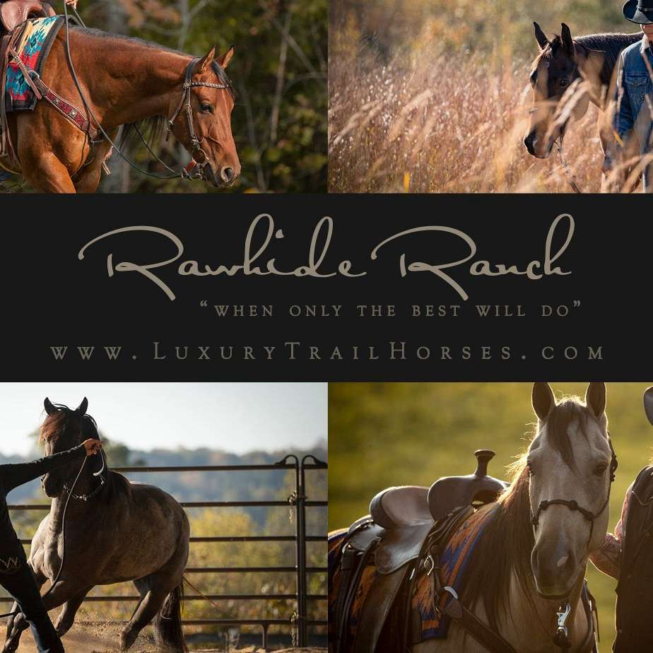 Rawhide Ranch Luxury Trail Horses
