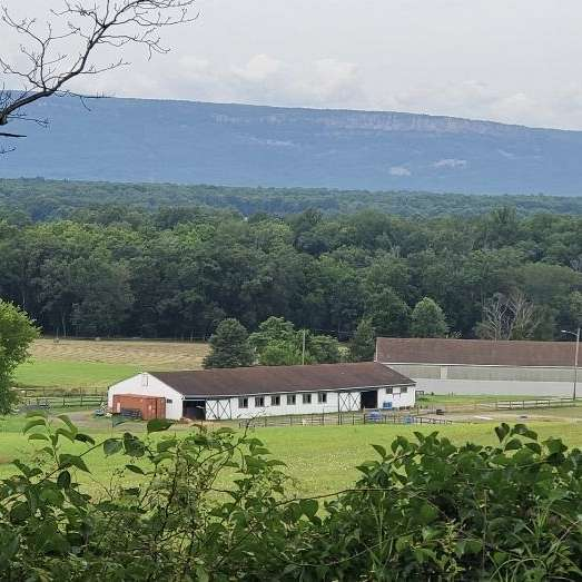 Ridgeview Stables Sales Barn