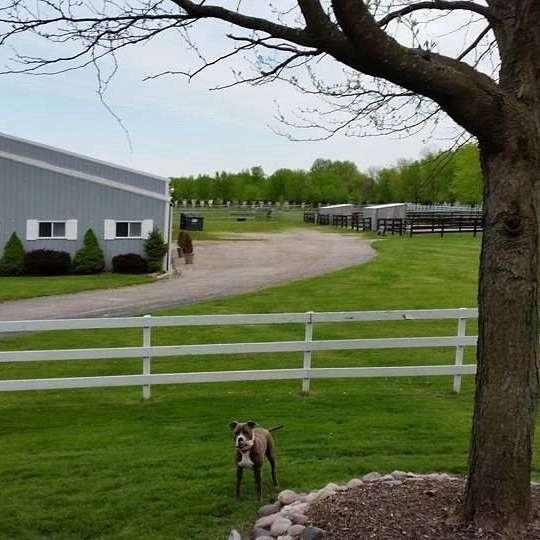 Trident Equestrian at Ramirez Family Farm