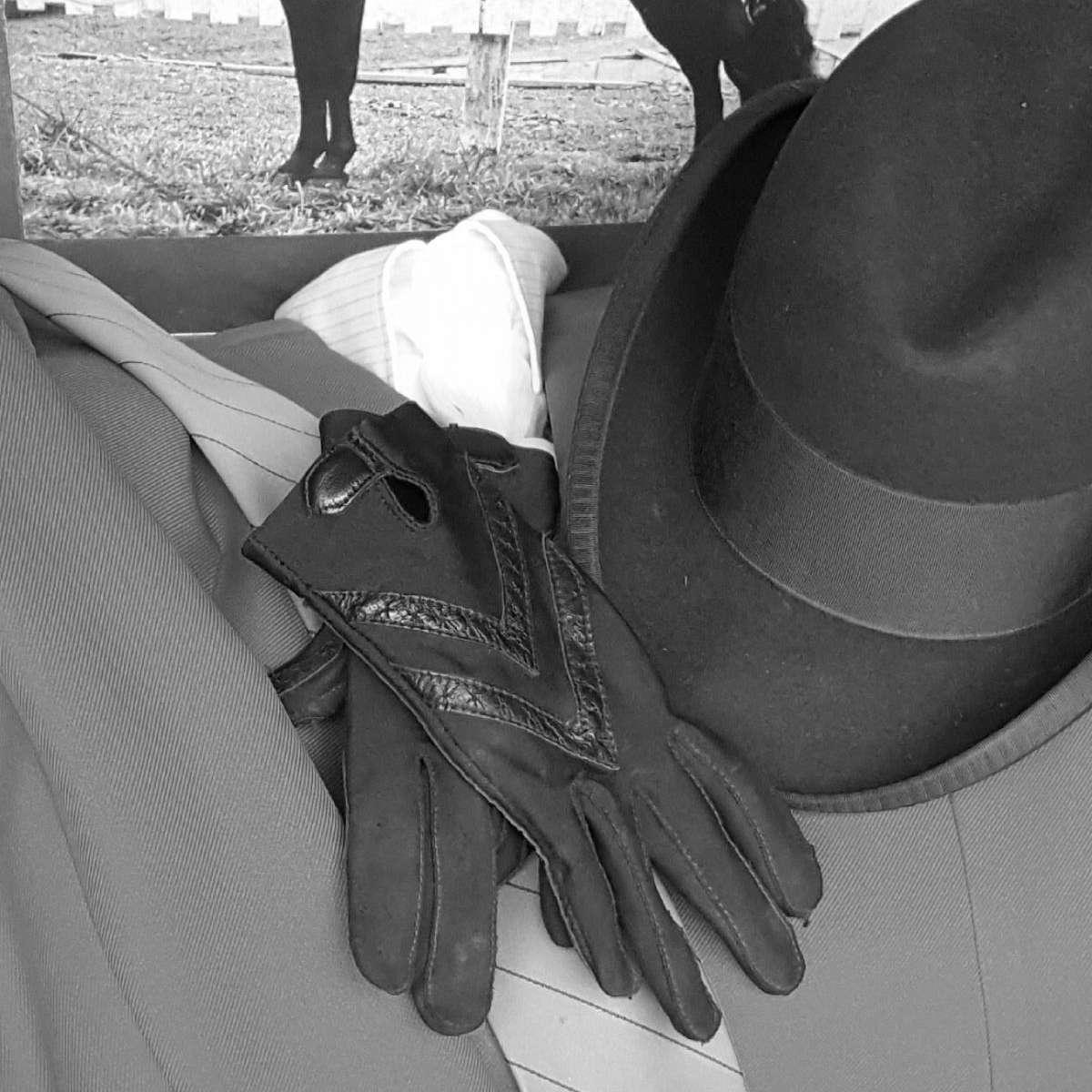 Arnolds Walking Horses