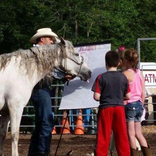 JC Horsemanship