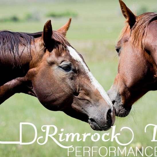 Rimrock Livestock Performance Horses