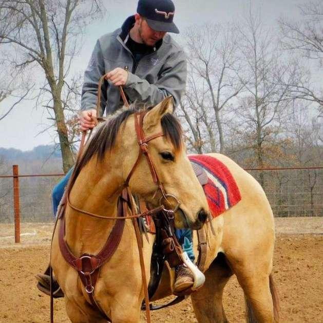 Black Water Horse Training