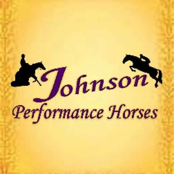 JOHNSON PERFORMANCE HORSES LLC