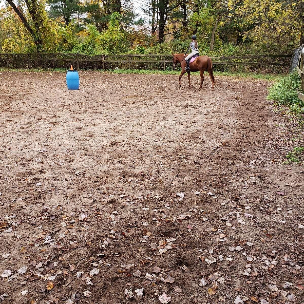 Hidden Meadow Equestrian Center