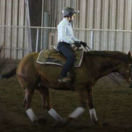 Souva Performance Horses