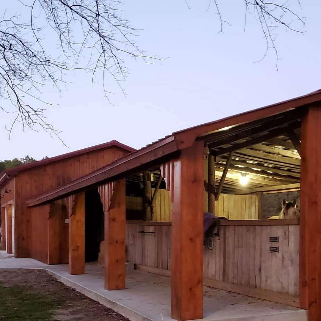 Fernweh Sport Horses