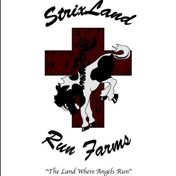 StrixLand Run Farm Sitting