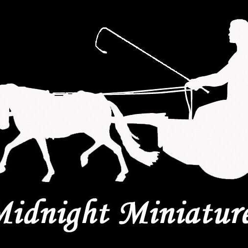 Midnight Miniatures