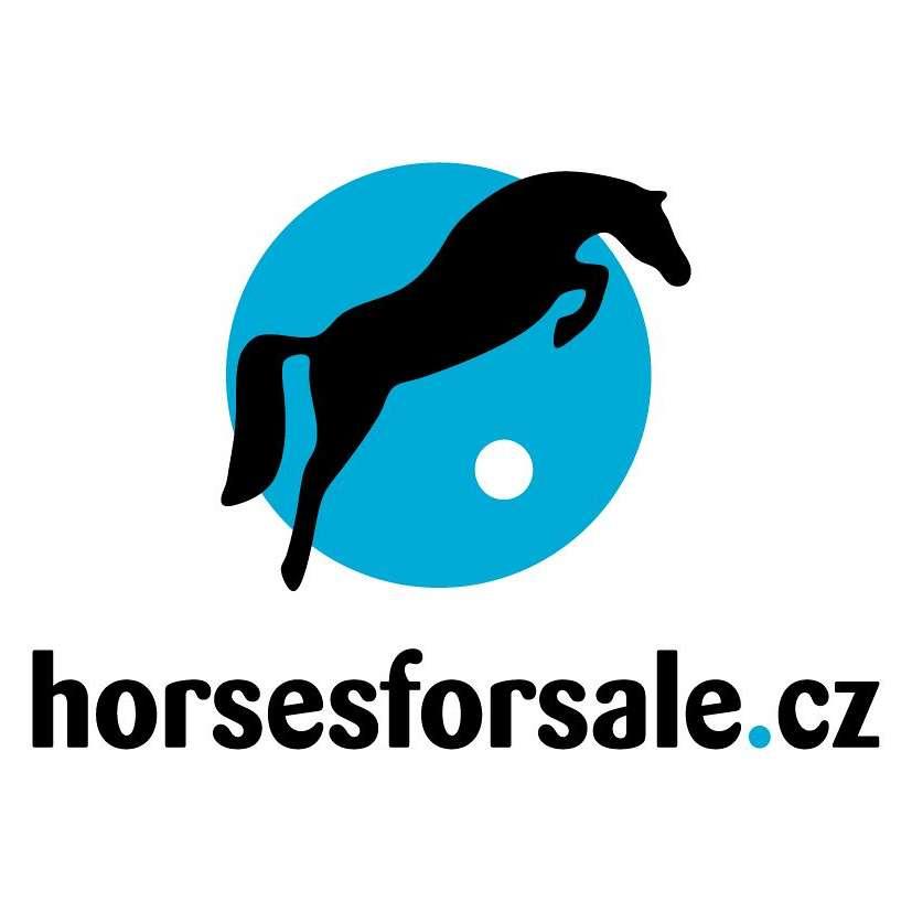Tereza - horses