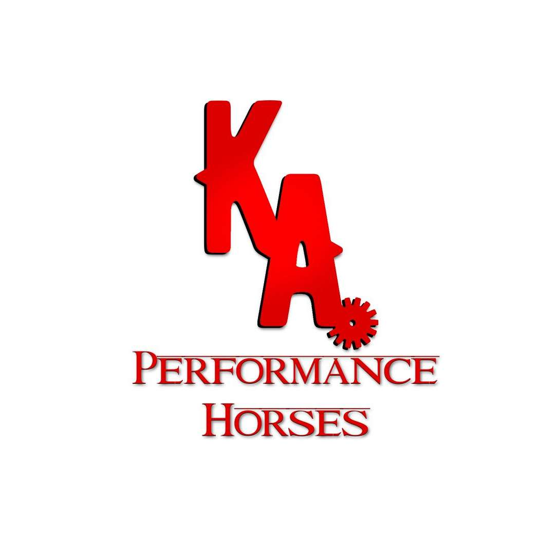 T an H Performance Horses