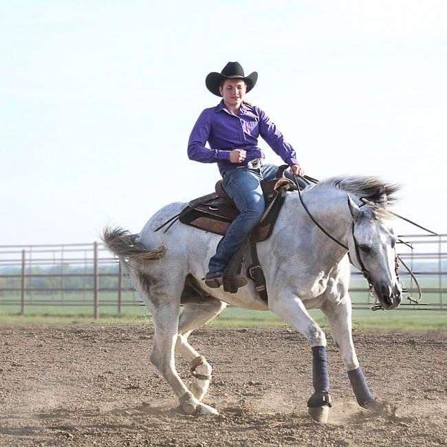 Dunlap Performance Horses
