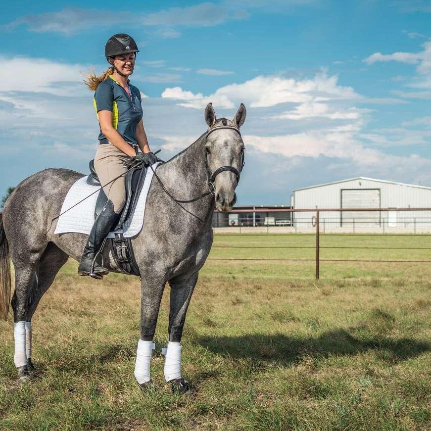 Composite Equine