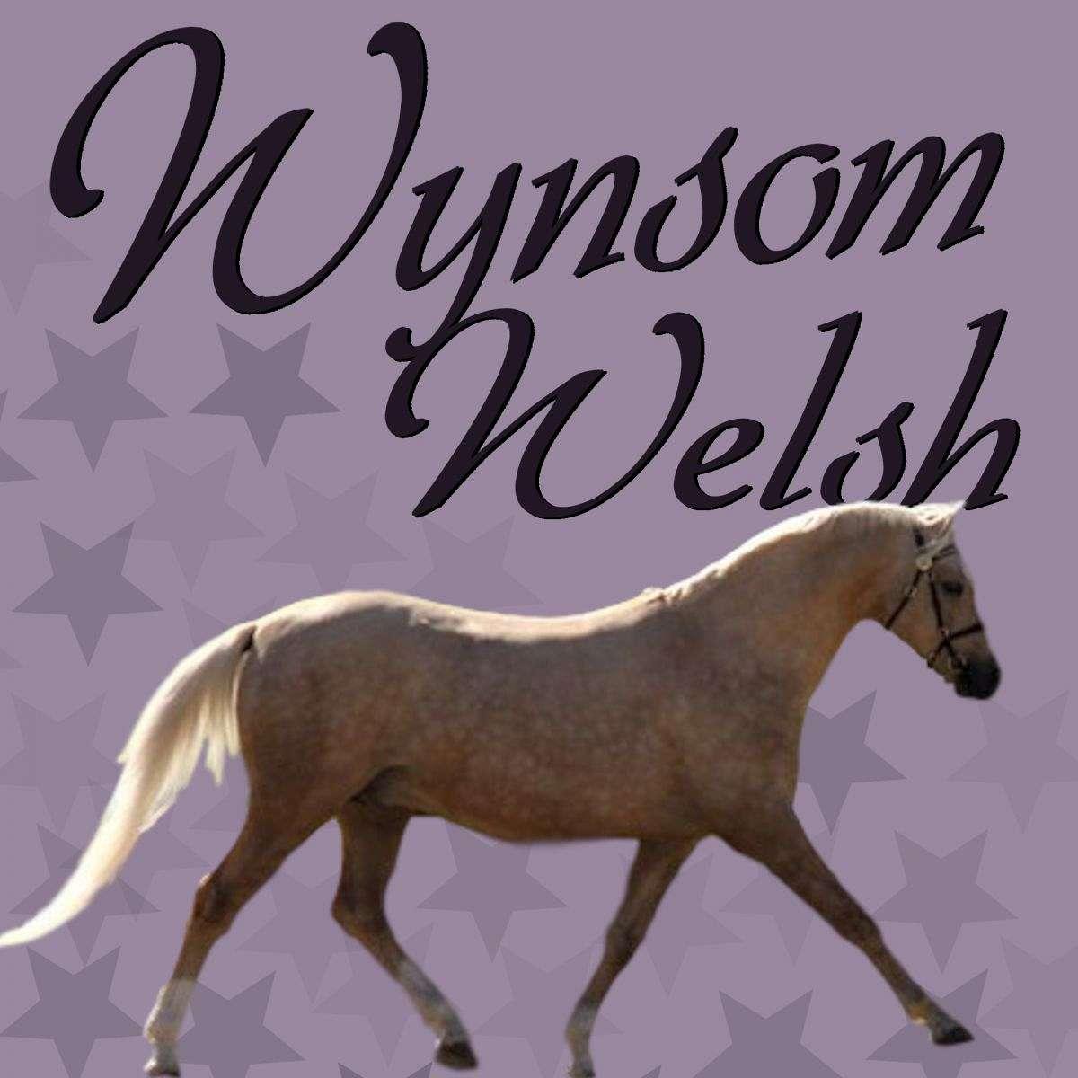 Wynsom Welsh