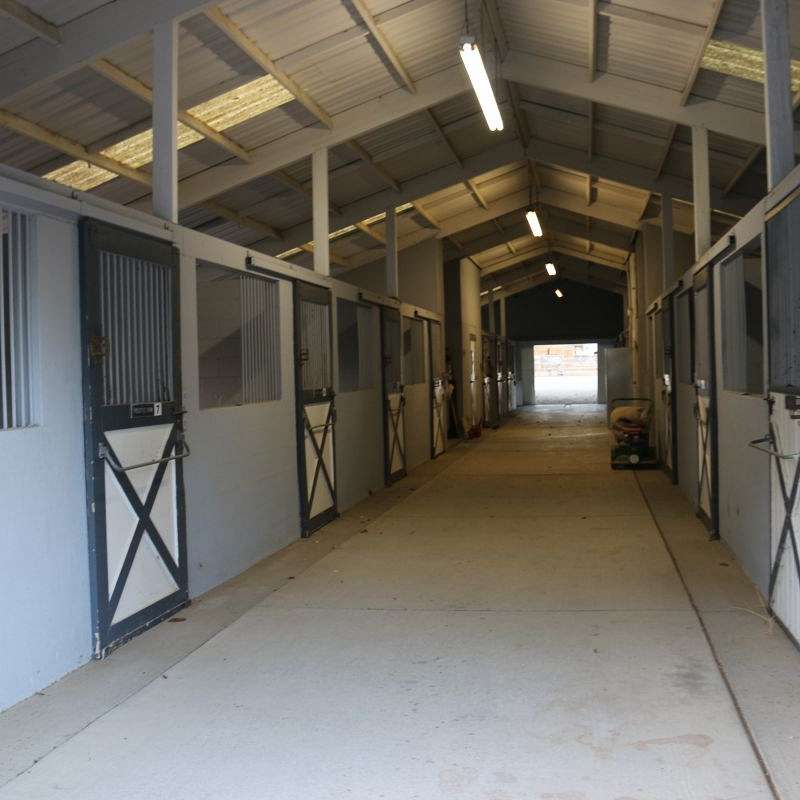 Freestyle Farm