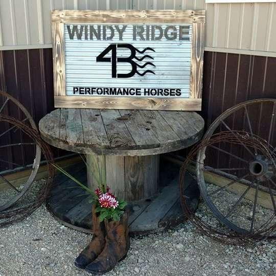 Windy Ridge Arena LLC