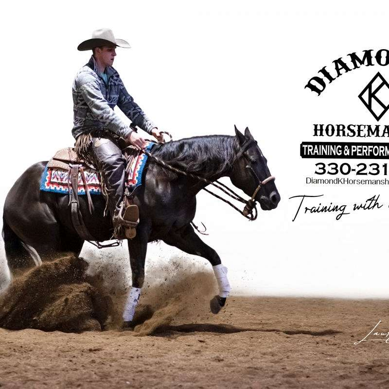 Diamond k horsemanship Training an Performance Hor