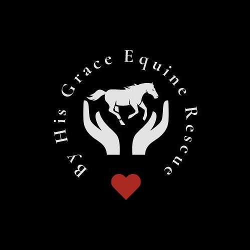 By His Grace Equine Rescue  Wz Ranch