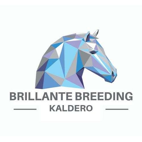 Brillante Breeding