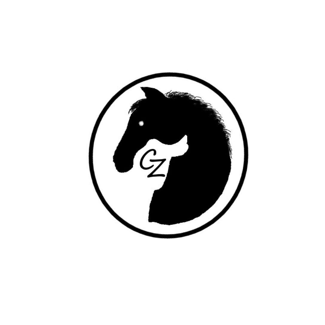 Comfortzone Saddle Fit LLC