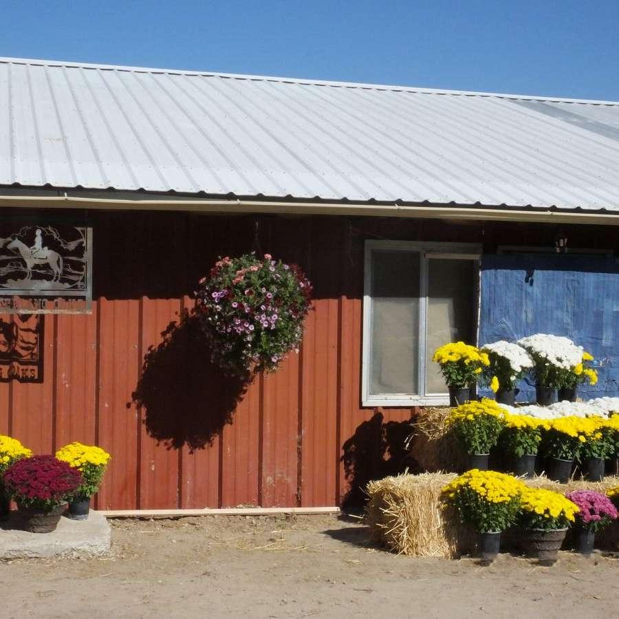 Sterling Oaks Farm