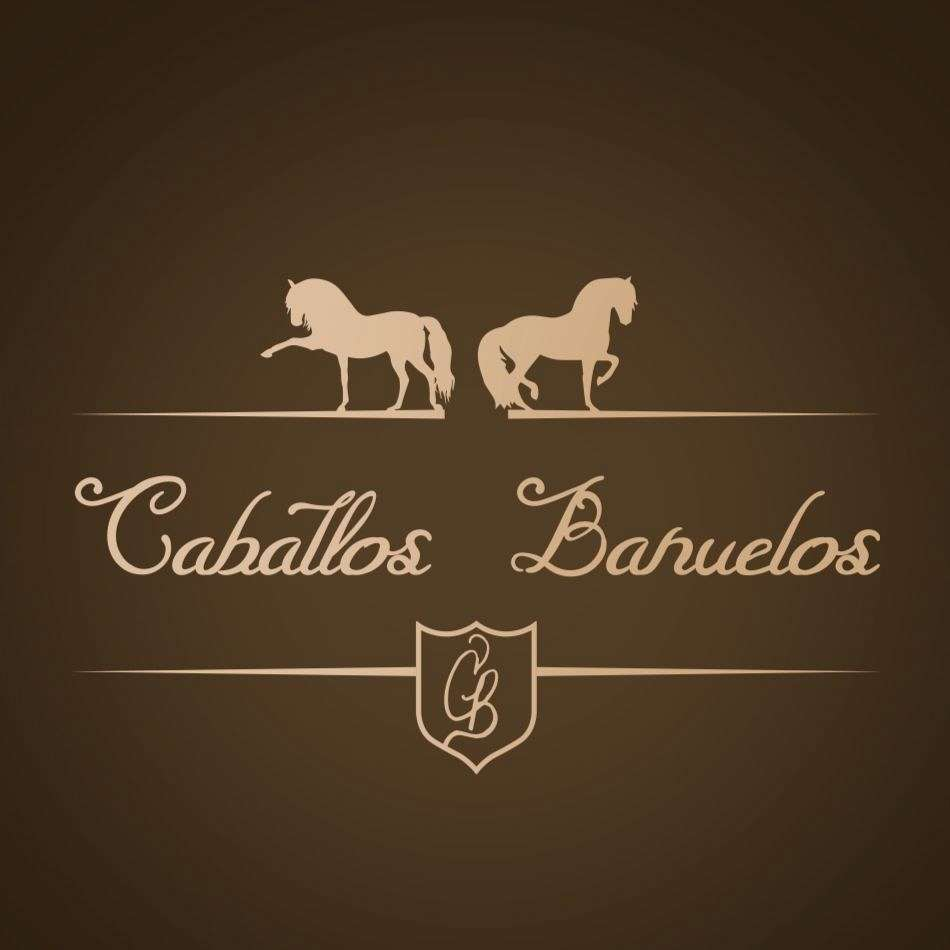 Caballos Banuelos