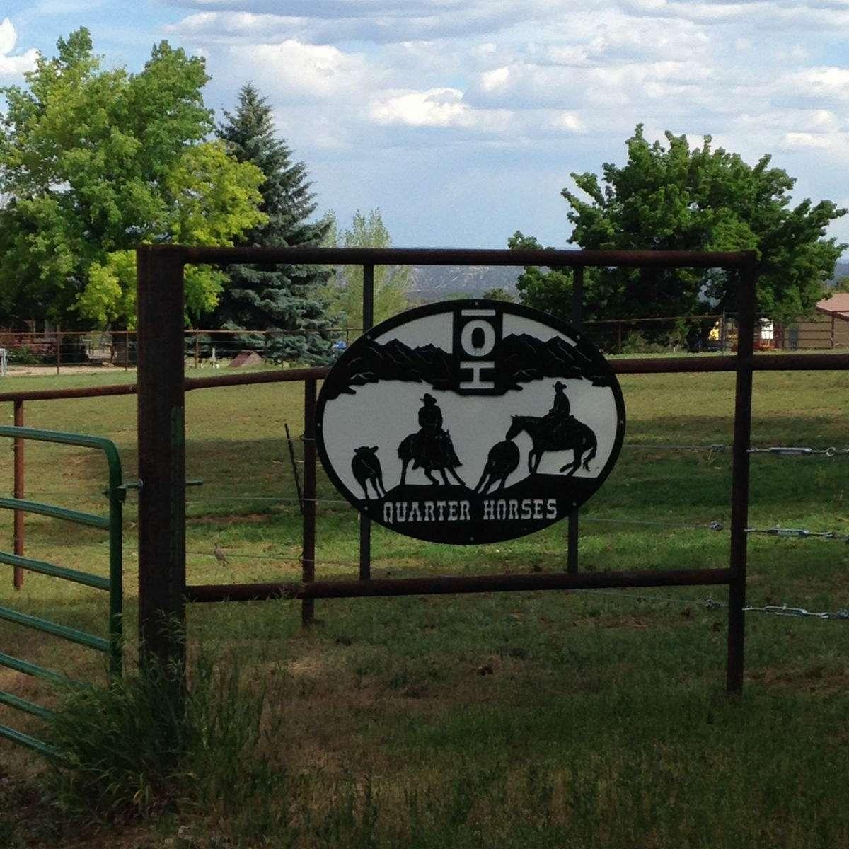 Bar O H Quarter Horses